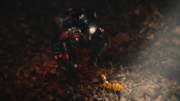 Человек-муравей, кадр из фильма